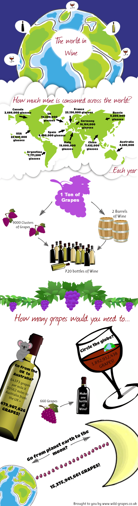 World In Wine Infography